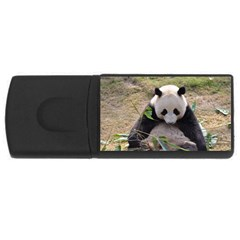 Big Panda USB Flash Drive Rectangular (1 GB)