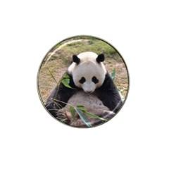 Big Panda Hat Clip Ball Marker (4 pack)