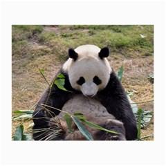 Big Panda Glasses Cloth (Small)