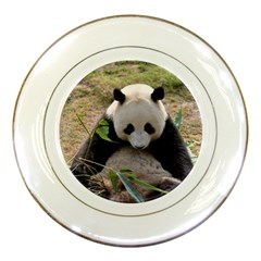 Big Panda Porcelain Plate