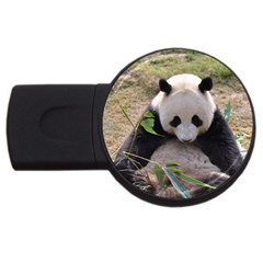 Big Panda Usb Flash Drive Round (4 Gb)