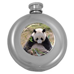Big Panda Hip Flask (5 oz)