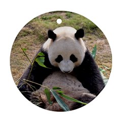 Big Panda Round Ornament (two Sides)