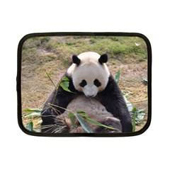 Big Panda Netbook Case (small)