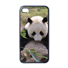 Big Panda Apple Iphone 4 Case (black)