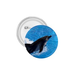 Swimming Dolphin 1 75  Button