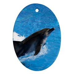 Swimming Dolphin Ornament (Oval)