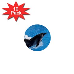 Swimming Dolphin 1  Mini Button (10 pack)