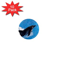 Swimming Dolphin 1  Mini Magnet (10 pack)