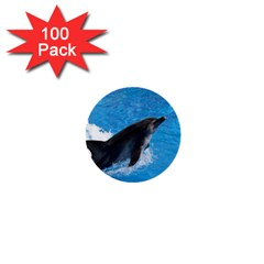 Swimming Dolphin 1  Mini Button (100 pack)