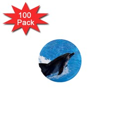 Swimming Dolphin 1  Mini Magnet (100 pack)