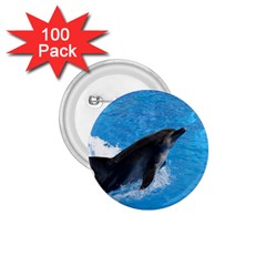 Swimming Dolphin 1 75  Button (100 Pack)