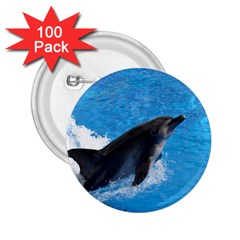 Swimming Dolphin 2 25  Button (100 Pack)