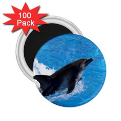 Swimming Dolphin 2 25  Magnet (100 Pack)