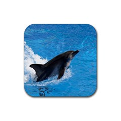 Swimming Dolphin Rubber Square Coaster (4 pack)