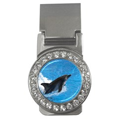 Swimming Dolphin Money Clip (cz)