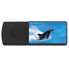 Swimming Dolphin USB Flash Drive Rectangular (2 GB)