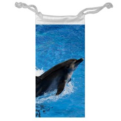 Swimming Dolphin Jewelry Bag