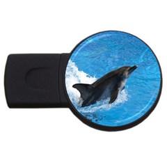 Swimming Dolphin Usb Flash Drive Round (4 Gb)