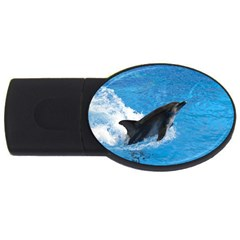 Swimming Dolphin USB Flash Drive Oval (4 GB)