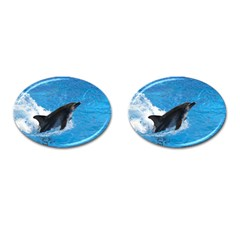 Swimming Dolphin Cufflinks (Oval)