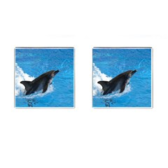 Swimming Dolphin Cufflinks (square)
