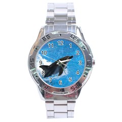 Swimming Dolphin Stainless Steel Analogue Men's Watch