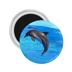 Jumping Dolphin 2.25  Magnet