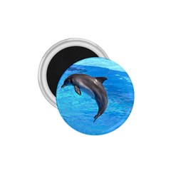 Jumping Dolphin 1 75  Magnet