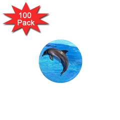 Jumping Dolphin 1  Mini Magnet (100 pack)