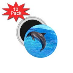 Jumping Dolphin 1 75  Magnet (10 Pack)