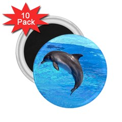 Jumping Dolphin 2 25  Magnet (10 Pack)