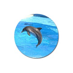 Jumping Dolphin Magnet 3  (Round)
