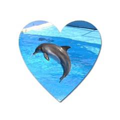 Jumping Dolphin Magnet (Heart)