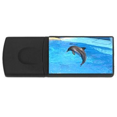 Jumping Dolphin USB Flash Drive Rectangular (1 GB)