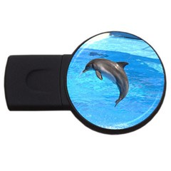 Jumping Dolphin Usb Flash Drive Round (4 Gb)