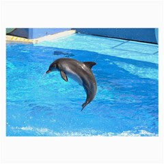 Jumping Dolphin Glasses Cloth (large, Two Sides)