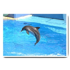 Jumping Dolphin Large Doormat