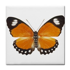 Butterfly Insect Ceramic Tile