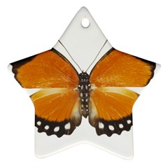 Butterfly Insect Ceramic Ornament (star)