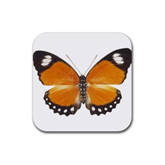 Butterfly Insect Rubber Drinks Coaster (Square)