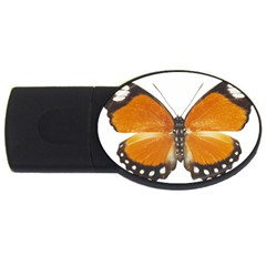 Butterfly Insect 2gb Usb Flash Drive (oval)
