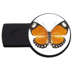 Butterfly Insect 4Gb USB Flash Drive (Round)