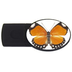 Butterfly Insect 4Gb USB Flash Drive (Oval)