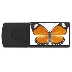 Butterfly Insect 4Gb USB Flash Drive (Rectangle)