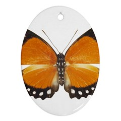 Butterfly Insect Twin-sided Ceramic Ornament (Oval)