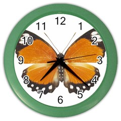 Butterfly Insect Colored Wall Clock