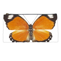 Butterfly Insect Pencil Case