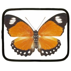 Butterfly Insect 13  Netbook Case