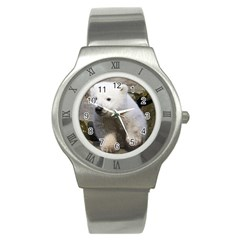 Bear3 Stainless Steel Watch